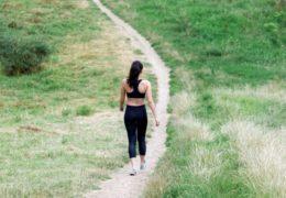 Przelicznik kalorii – Samodzielnie czy w sieci